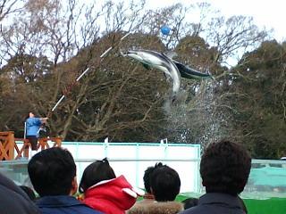 ◆新屋島水族館_e0074053_17502756.jpg