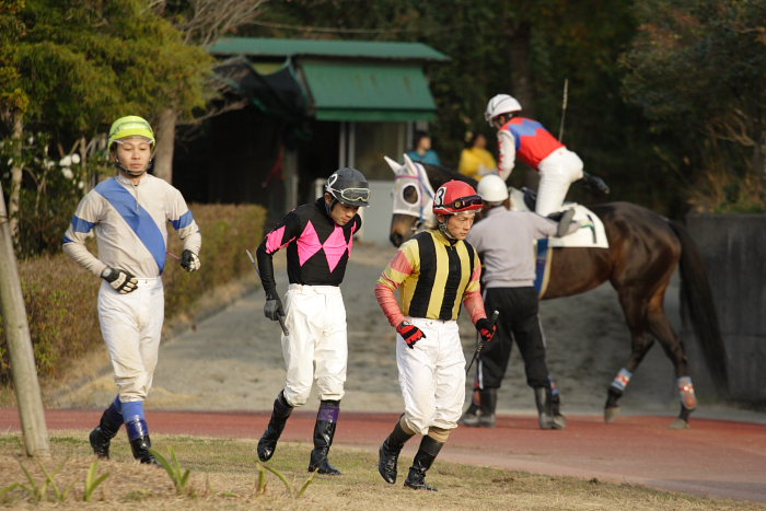 2007年1月1日(月) 高知競馬 9R カドと愉快な仲間特別_a0077663_9332394.jpg