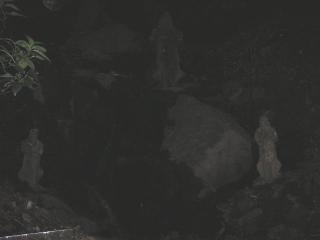 浄瑠璃寺奥の院_f0110366_22344917.jpg