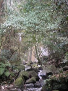 浄瑠璃寺奥の院_f0110366_22352352.jpg