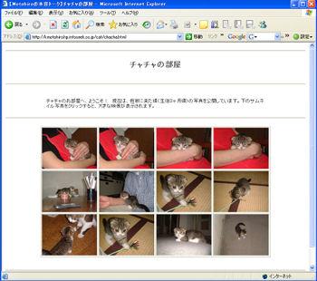 b0077271_10414320.jpg