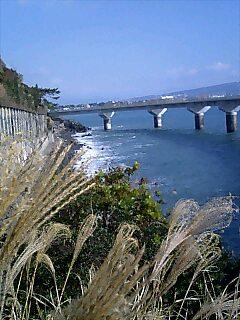 BRM107静岡_b0024696_22242734.jpg