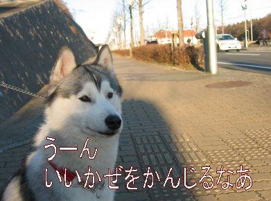 f0112407_0591692.jpg