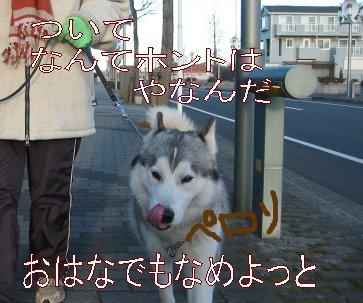 f0112407_104143.jpg