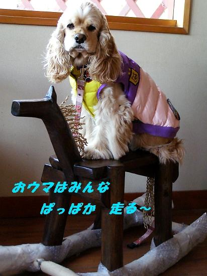 b0067012_0413278.jpg