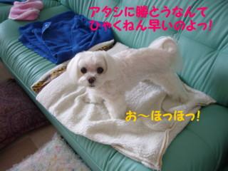 f0005727_1610486.jpg