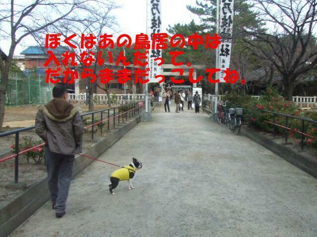 f0059334_9384424.jpg