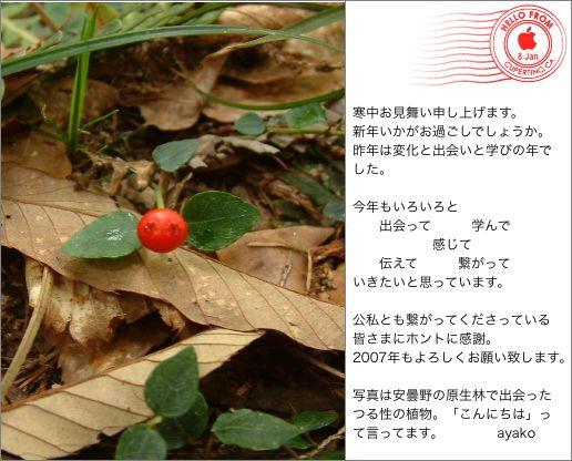 b0024339_155176.jpg