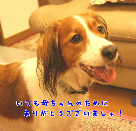 d0013149_014510.jpg