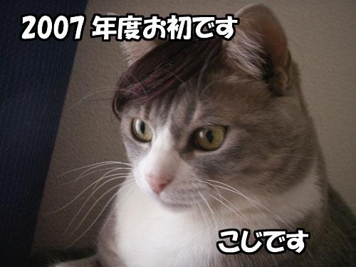 b0083267_21403919.jpg