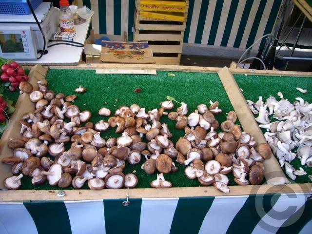 ■トリュフTruffe (champignon)_a0014299_1831333.jpg