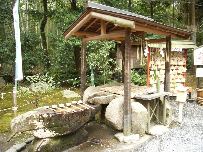 京都・大阪旅 2日目 その3 野宮神社_d0091021_2220238.jpg