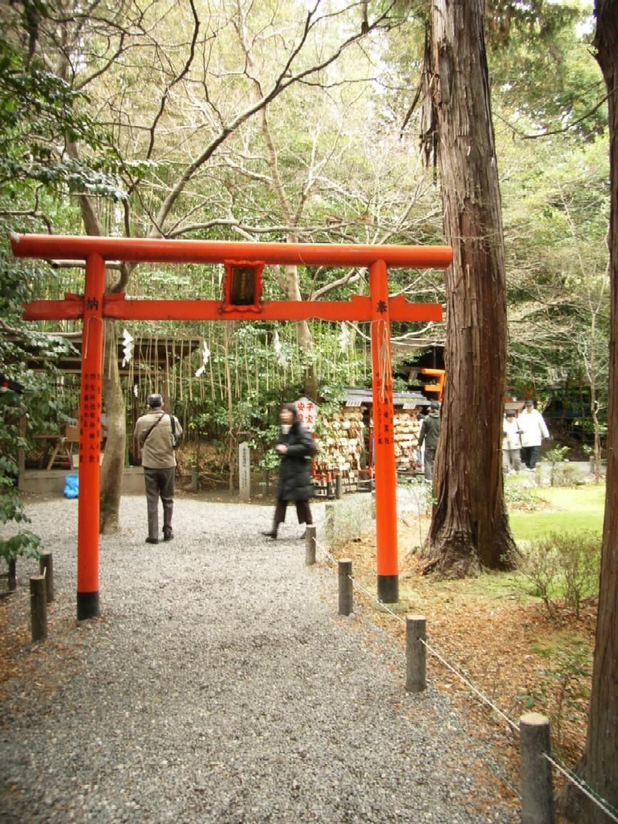 京都・大阪旅 2日目 その3 野宮神社_d0091021_2224860.jpg