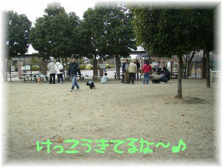 d0080336_0151340.jpg