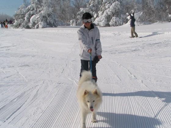 スキーシーズン!_f0128542_23364543.jpg