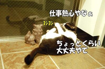 b0041182_19521322.jpg