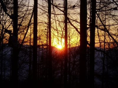 今日もきれいな夕日でした_d0102327_2213545.jpg