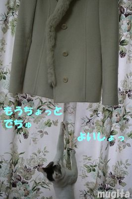 f0063729_15372896.jpg