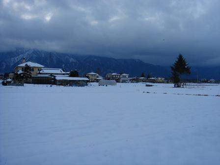 雪にうもれて_a0014840_224836100.jpg