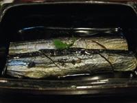 東北スキー等旅行記その3~会津若松の居酒屋にて_c0060651_22391241.jpg