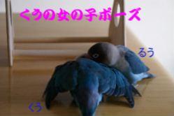 e0021121_1274392.jpg