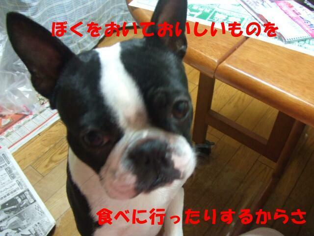 f0059334_1165885.jpg
