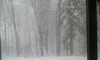 猛吹雪です_e0088956_0272531.jpg