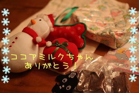 b0079792_220087.jpg