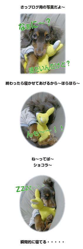 f0118627_040429.jpg