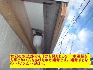 f0031037_20352044.jpg