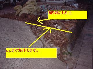 f0031037_20381527.jpg