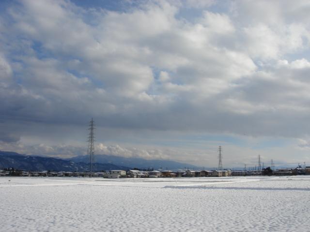 一月の散歩道_a0014840_2146318.jpg