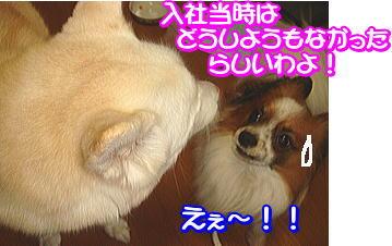 f0011845_110538.jpg
