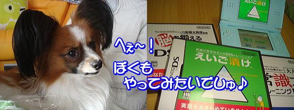 f0011845_18177.jpg