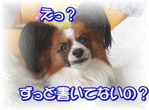 f0011845_184250.jpg