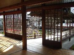 京都に行ってきました・祇園界隈_c0055363_14463546.jpg