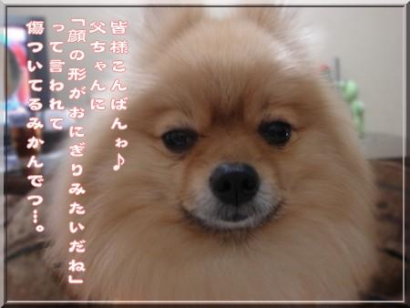 b0078073_200121.jpg
