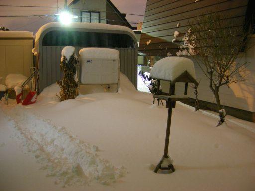 ドカ雪ではありませんが、積もりました_c0025115_23581564.jpg