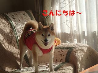 f0075043_1764883.jpg