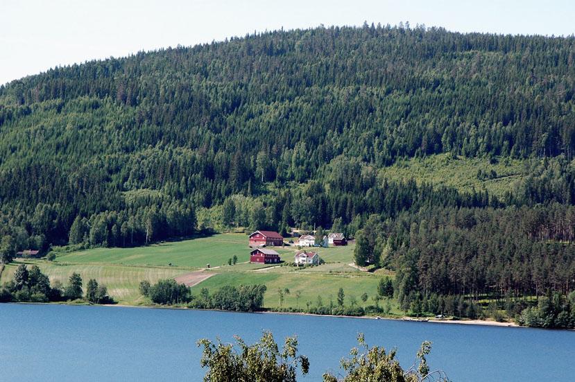 ノルウェー_e0108650_17582594.jpg