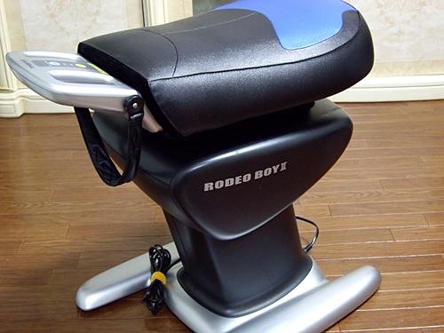 [乗馬フィットネス機器]ロデオボーイIIがやって来た....。_a0009562_16401421.jpg