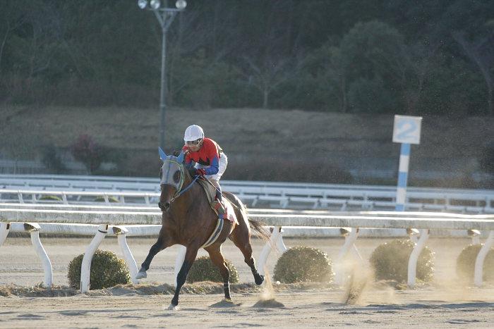 2007年1月14日(日) 高知競馬 10R ガーネット特別_a0077663_18401677.jpg