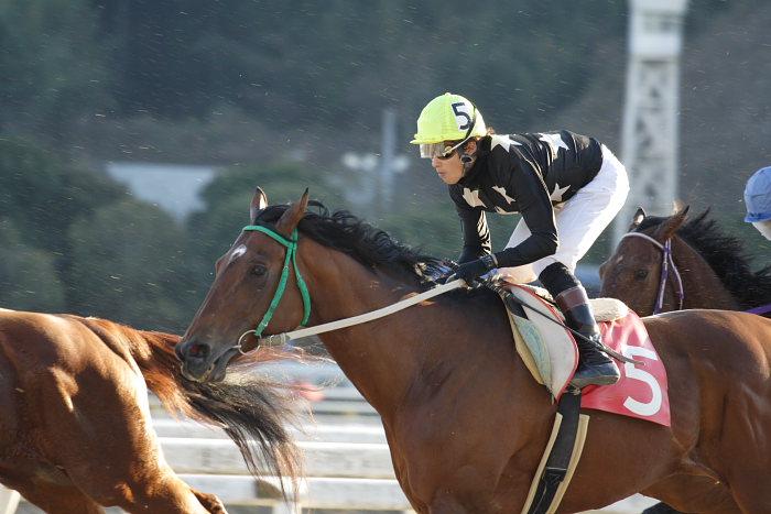 2007年1月14日(日) 高知競馬 10R ガーネット特別_a0077663_18414412.jpg