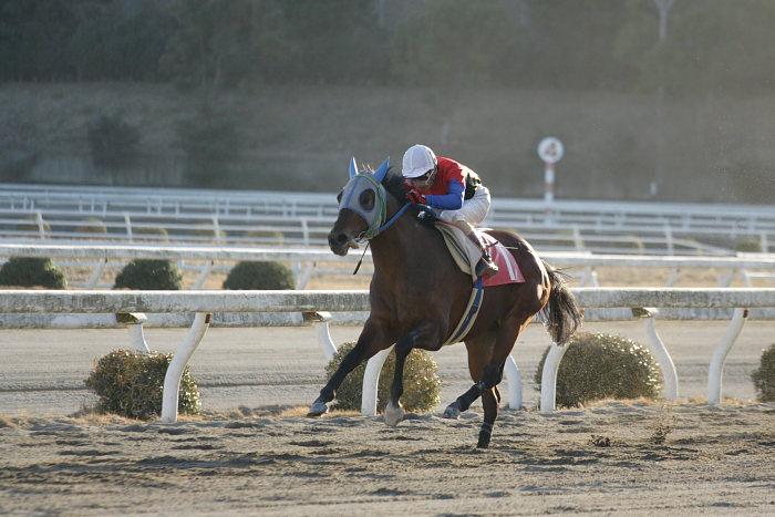 2007年1月14日(日) 高知競馬 10R ガーネット特別_a0077663_18421168.jpg