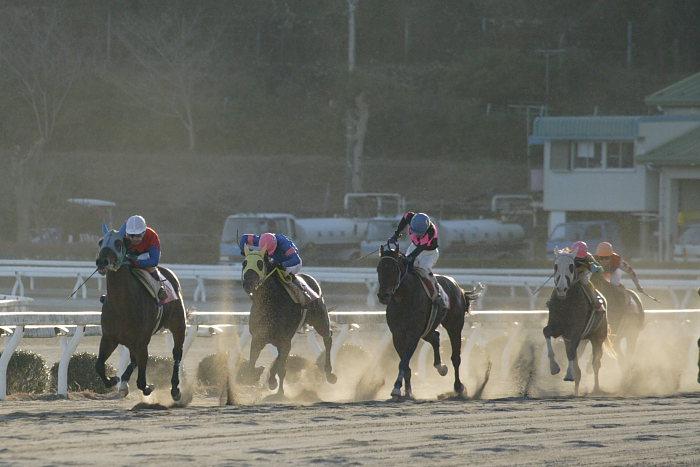 2007年1月14日(日) 高知競馬 10R ガーネット特別_a0077663_1842190.jpg