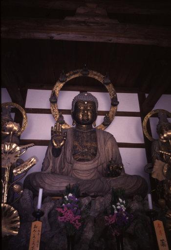 西国薬師巡礼<第9番 金剛寺>_a0045381_2145557.jpg