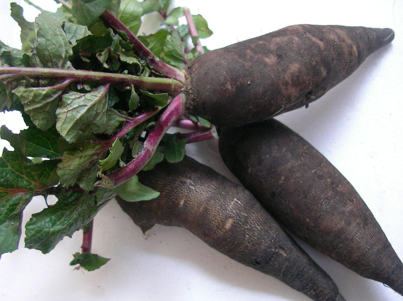 珍しいお野菜です♪_e0025817_19205470.jpg