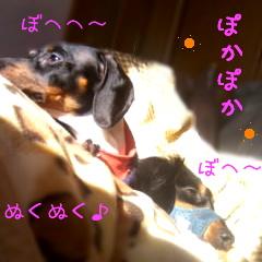 b0048649_1644546.jpg