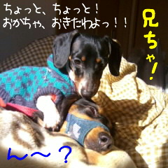 b0048649_165994.jpg