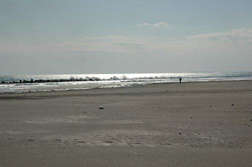 片貝海岸_e0000951_15334849.jpg
